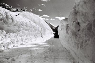 171 - snowboy