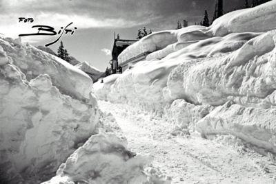 174 - viale Dolomiti davanti a Savoia