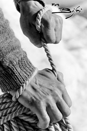 401 - mani e corda - verticale